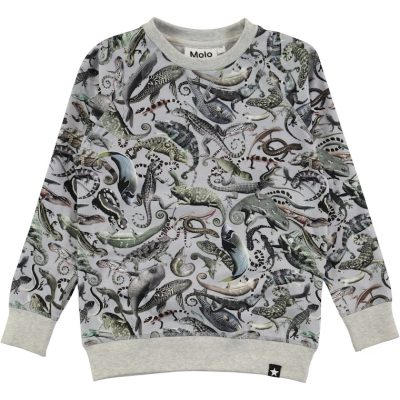 Molo Sweatshirt Romeo Entangled