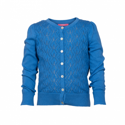 Le Big Jada Cardigan Blue Hyacinth