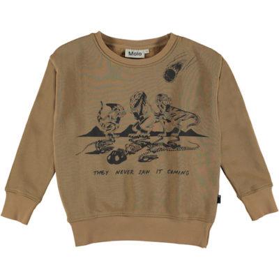Molo Sweater Murphy Emerge