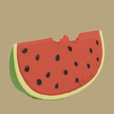 Oli&Carol Bijtspeeltje Watermeloen