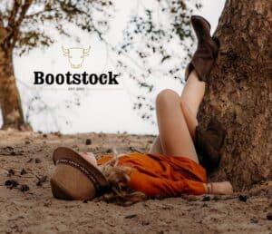 bootstock laars